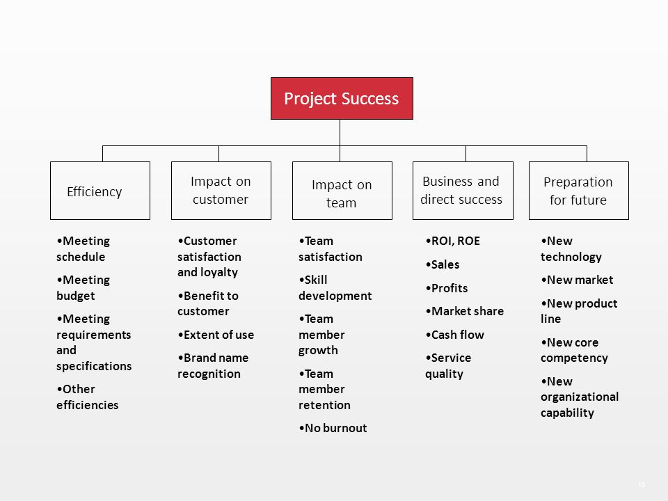 13 Efficiency Impact on customer Impact on team Business and direct success Preparation for future Project Success Meeting schedule Meeting budget Mee