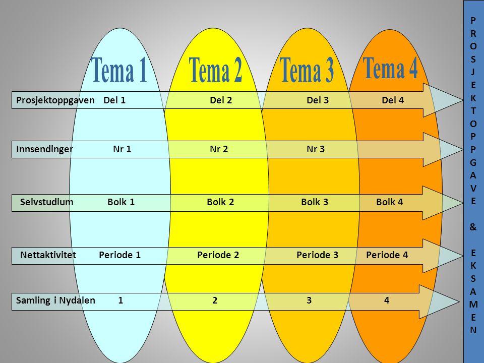 Samling i Nydalen 1 2 3 4 Nettaktivitet Periode 1 Periode 2 Periode 3 Periode 4 Selvstudium Bolk 1 Bolk 2 Bolk 3 Bolk 4 Innsendinger Nr 1 Nr 2 Nr 3 Pr