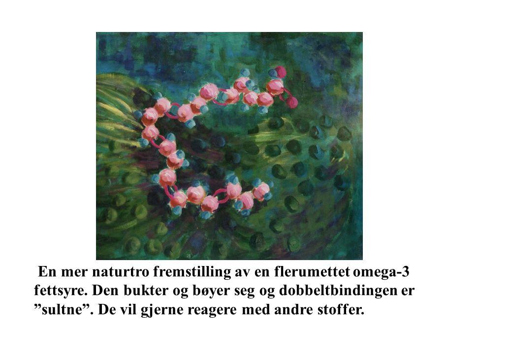 En mer naturtro fremstilling av en flerumettet omega-3 fettsyre.