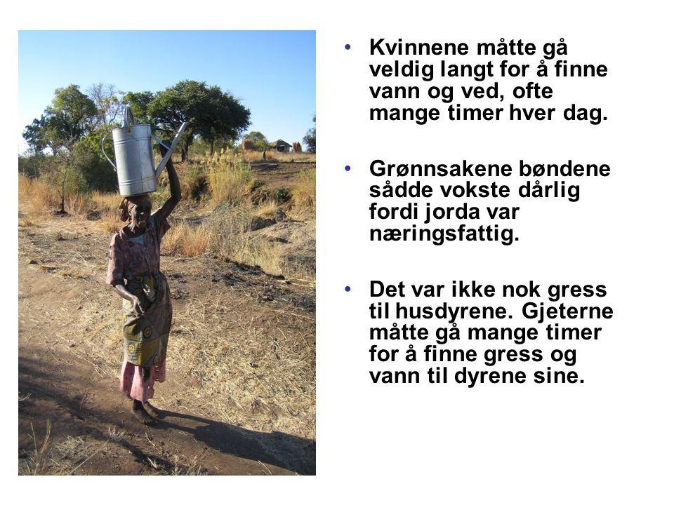 Kvinnene måtte gå veldig langt for å finne vann og ved, ofte mange timer hver dag.