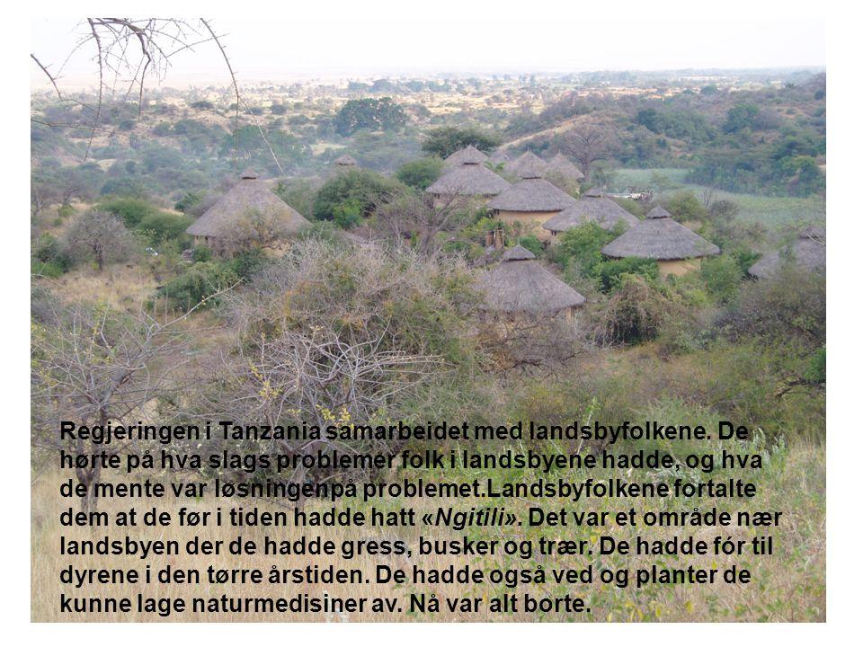 Regjeringen i Tanzania samarbeidet med landsbyfolkene.