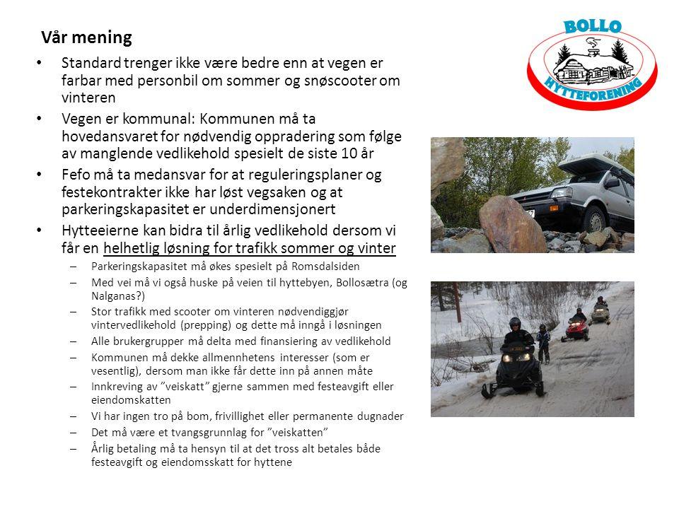 Standard trenger ikke være bedre enn at vegen er farbar med personbil om sommer og snøscooter om vinteren Vegen er kommunal: Kommunen må ta hovedansva