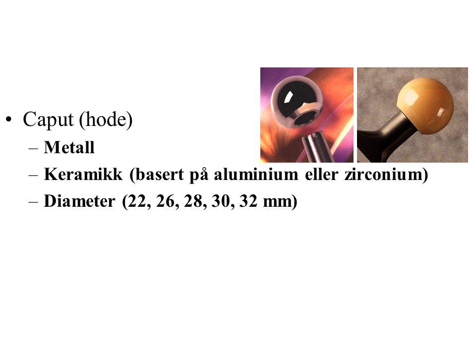 Caput (hode) –Metall –Keramikk (basert på aluminium eller zirconium) –Diameter (22, 26, 28, 30, 32 mm)