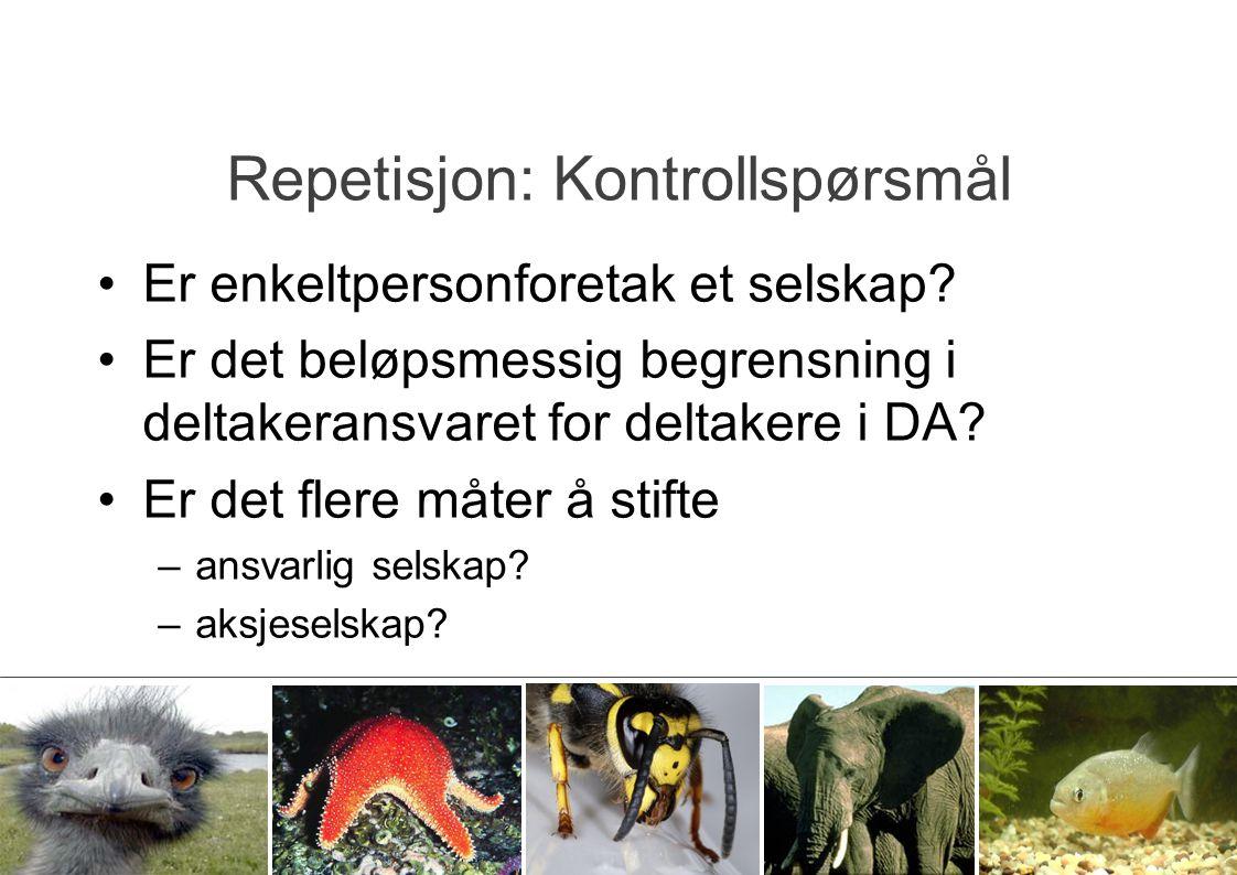 Repetisjon: Kontrollspørsmål Er enkeltpersonforetak et selskap? Er det beløpsmessig begrensning i deltakeransvaret for deltakere i DA? Er det flere må