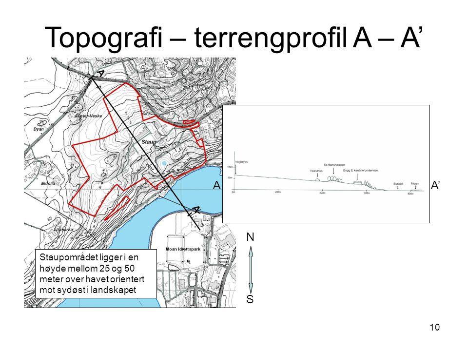 10 Topografi – terrengprofil A – A' S N A A' Staupområdet ligger i en høyde mellom 25 og 50 meter over havet orientert mot sydøst i landskapet