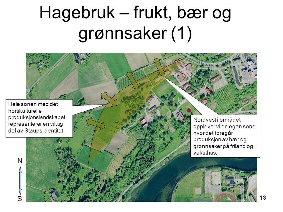 13 Nordvest i området opplever vi en egen sone hvor det foregår produksjon av bær og grønnsaker på friland og i veksthus. Hele sonen med det hortikult