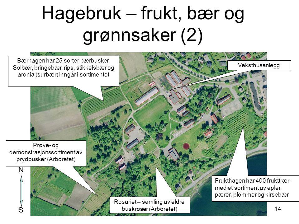 14 Frukthagen har 400 frukttrær med et sortiment av epler, pærer, plommer og kirsebær Bærhagen har 25 sorter bærbusker. Solbær, bringebær, rips, stikk