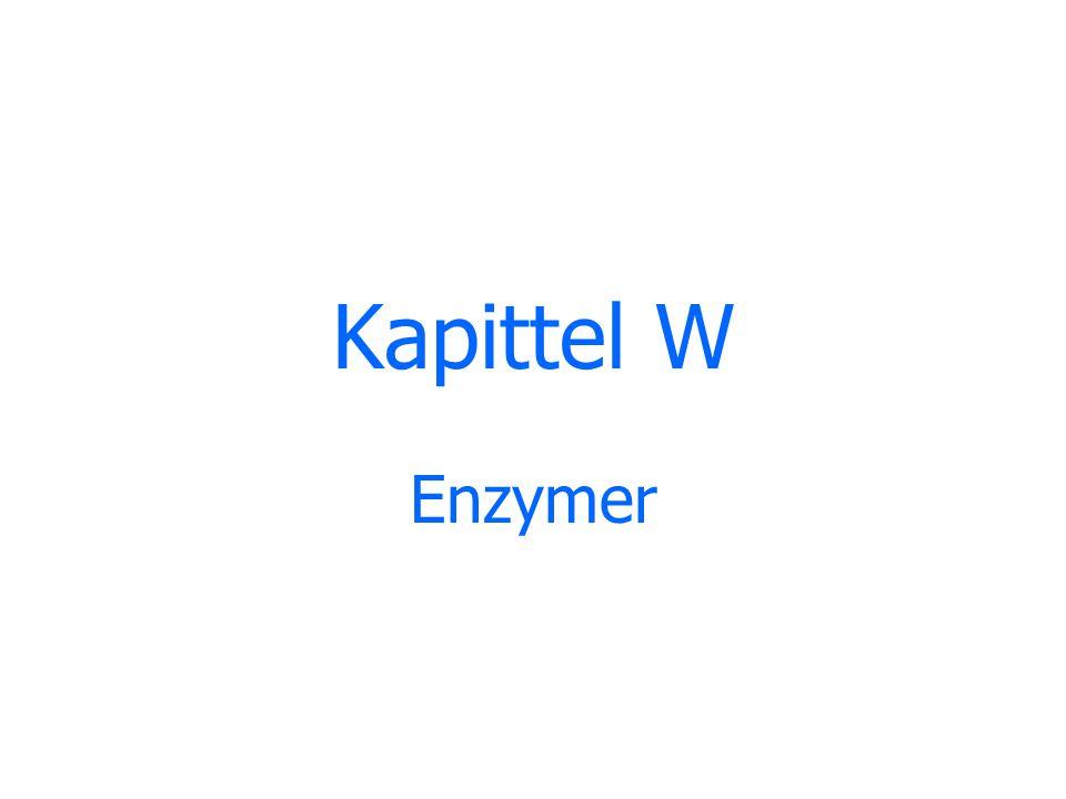 Enzymer er katalysatorer i levende organismer.Alle enzymer er proteiner.