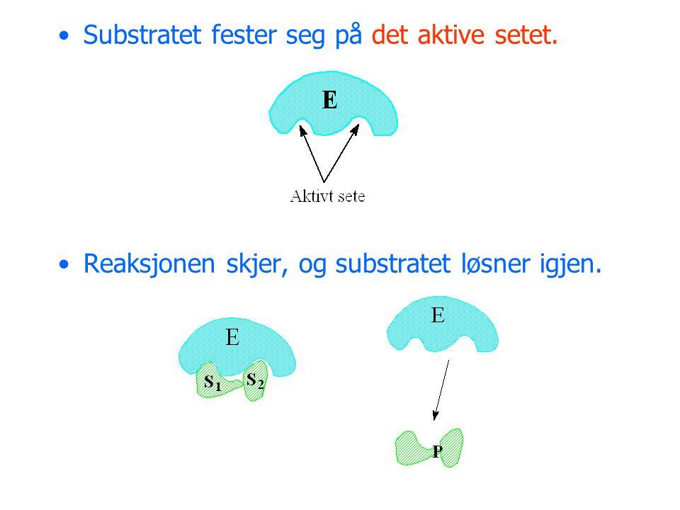 Mange enzymer trenger hjelp av en kofaktor.