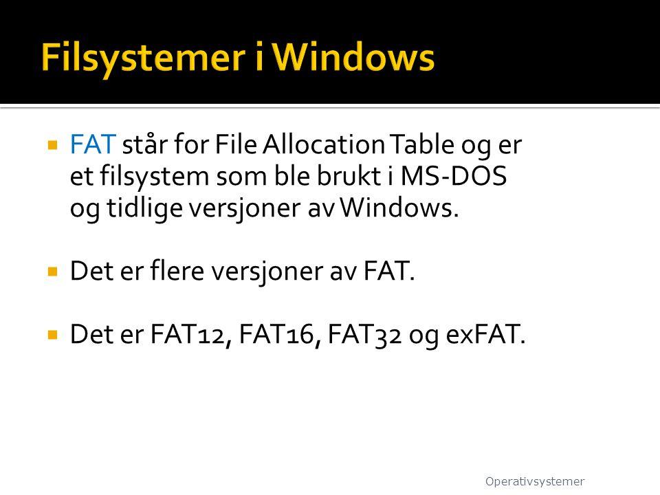  FAT står for File Allocation Table og er et filsystem som ble brukt i MS-DOS og tidlige versjoner av Windows.