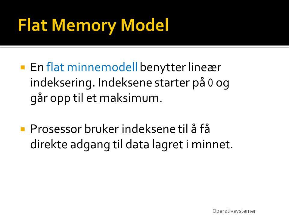 En flat minnemodell benytter lineær indeksering.