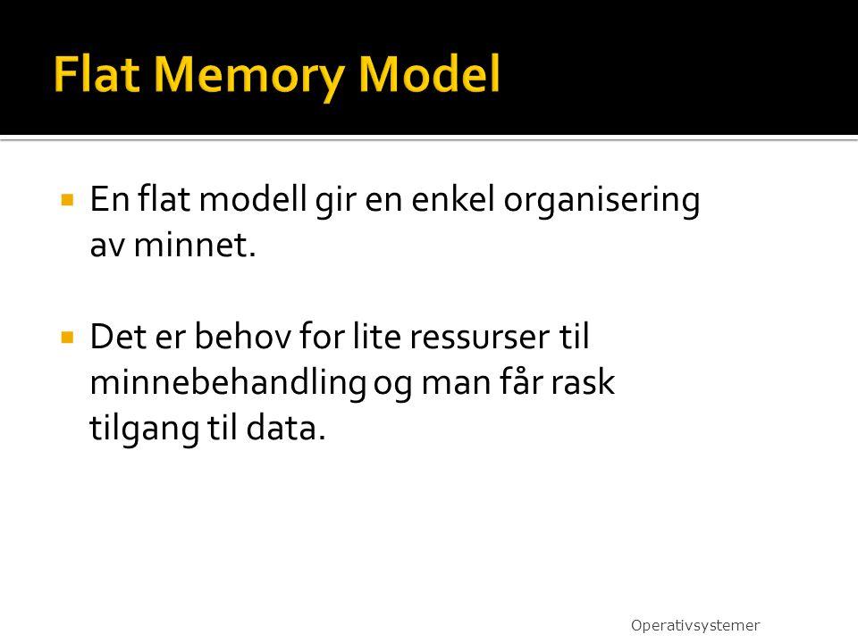  En flat modell gir en enkel organisering av minnet.
