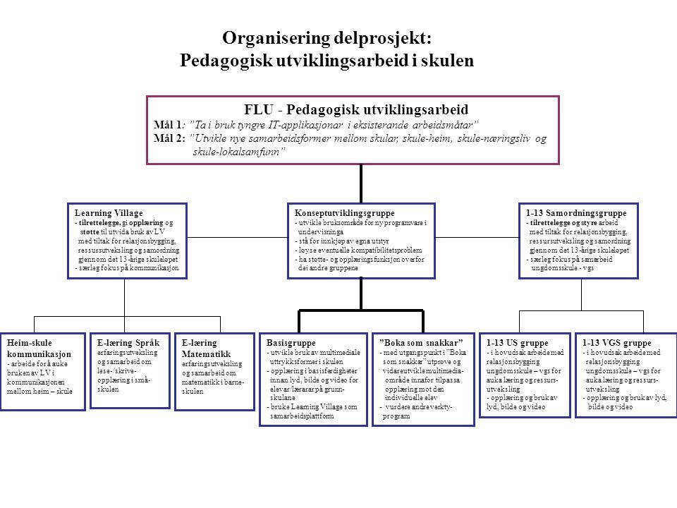 """Organisering delprosjekt: Pedagogisk utviklingsarbeid i skulen FLU - Pedagogisk utviklingsarbeid Mål 1: """"Ta i bruk tyngre IT-applikasjonar i eksistera"""