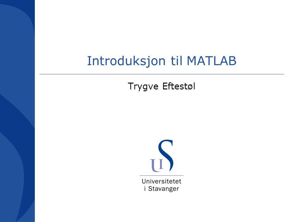 Kursets formål Bli kjent med MATLAB –Hva er MATLAB.