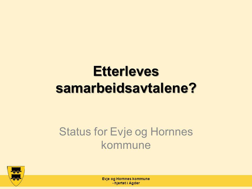 Evje og Hornnes kommune - hjertet i Agder Etterleves samarbeidsavtalene? Status for Evje og Hornnes kommune