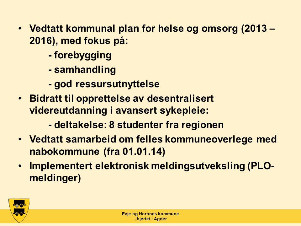 Evje og Hornnes kommune - hjertet i Agder Vedtatt kommunal plan for helse og omsorg (2013 – 2016), med fokus på: - forebygging - samhandling - god res