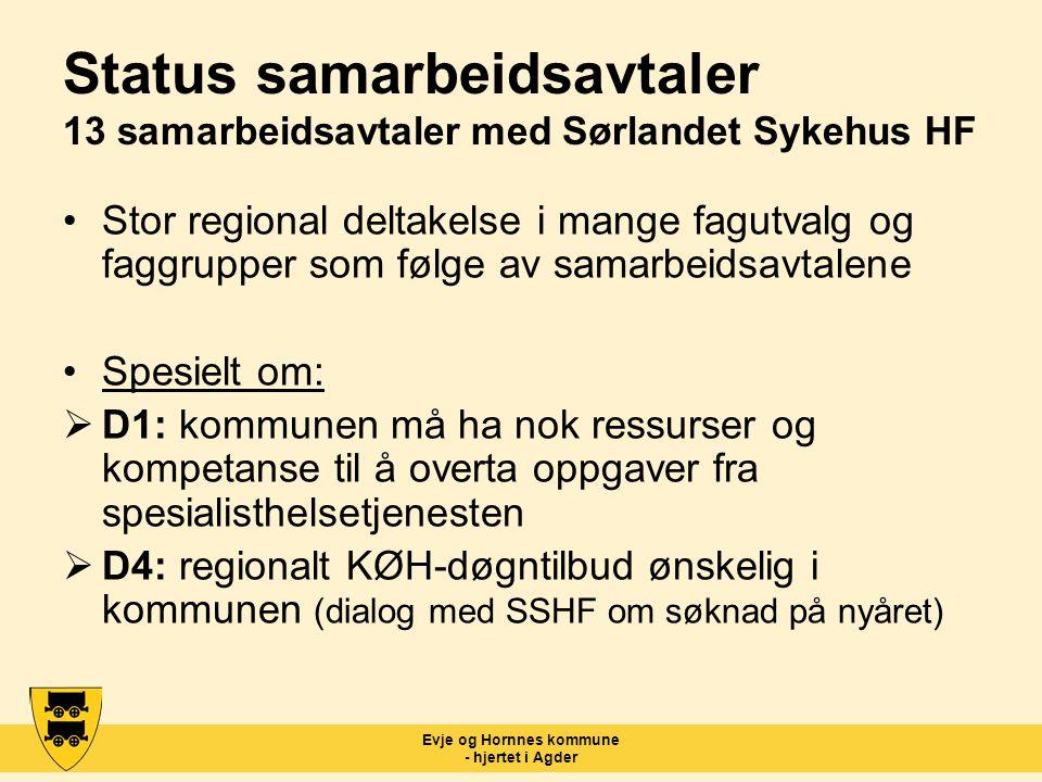 Evje og Hornnes kommune - hjertet i Agder Status samarbeidsavtaler 13 samarbeidsavtaler med Sørlandet Sykehus HF Stor regional deltakelse i mange fagu