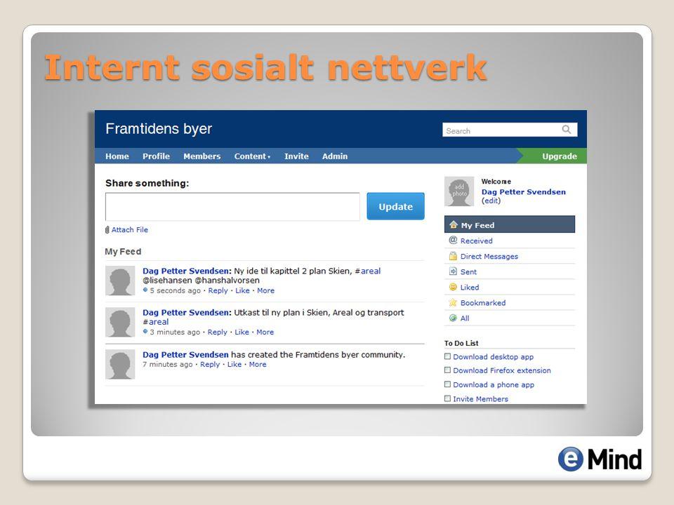 Internt sosialt nettverk