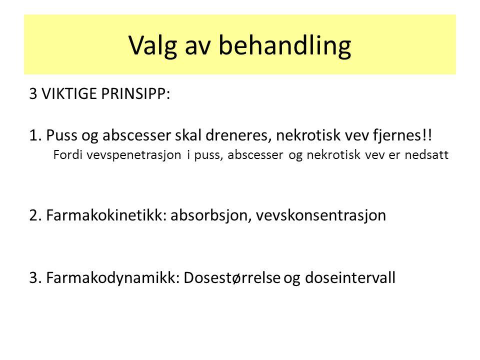 Valg av behandling 3 VIKTIGE PRINSIPP: 1. Puss og abscesser skal dreneres, nekrotisk vev fjernes!! Fordi vevspenetrasjon i puss, abscesser og nekrotis