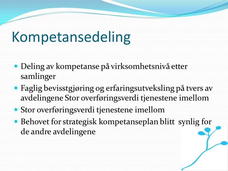 Kompetansedeling Deling av kompetanse på virksomhetsnivå etter samlinger Faglig bevisstgjøring og erfaringsutveksling på tvers av avdelingene Stor ove