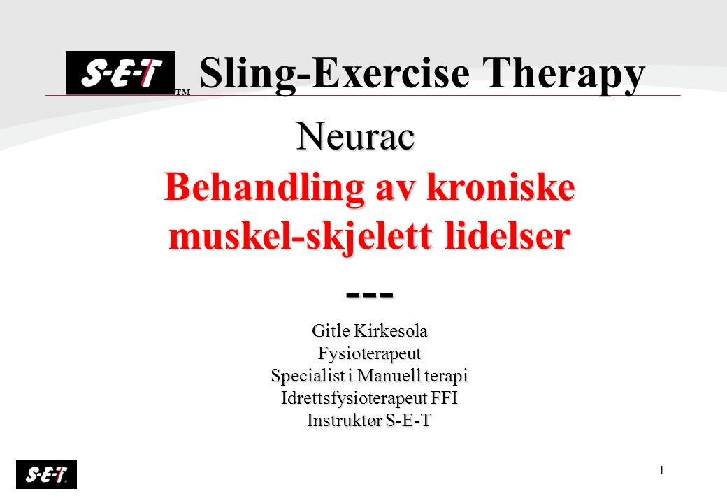 1 Behandling av kroniske muskel-skjelett lidelser --- Gitle Kirkesola Fysioterapeut Specialist i Manuell terapi Idrettsfysioterapeut FFI Instruktør S-