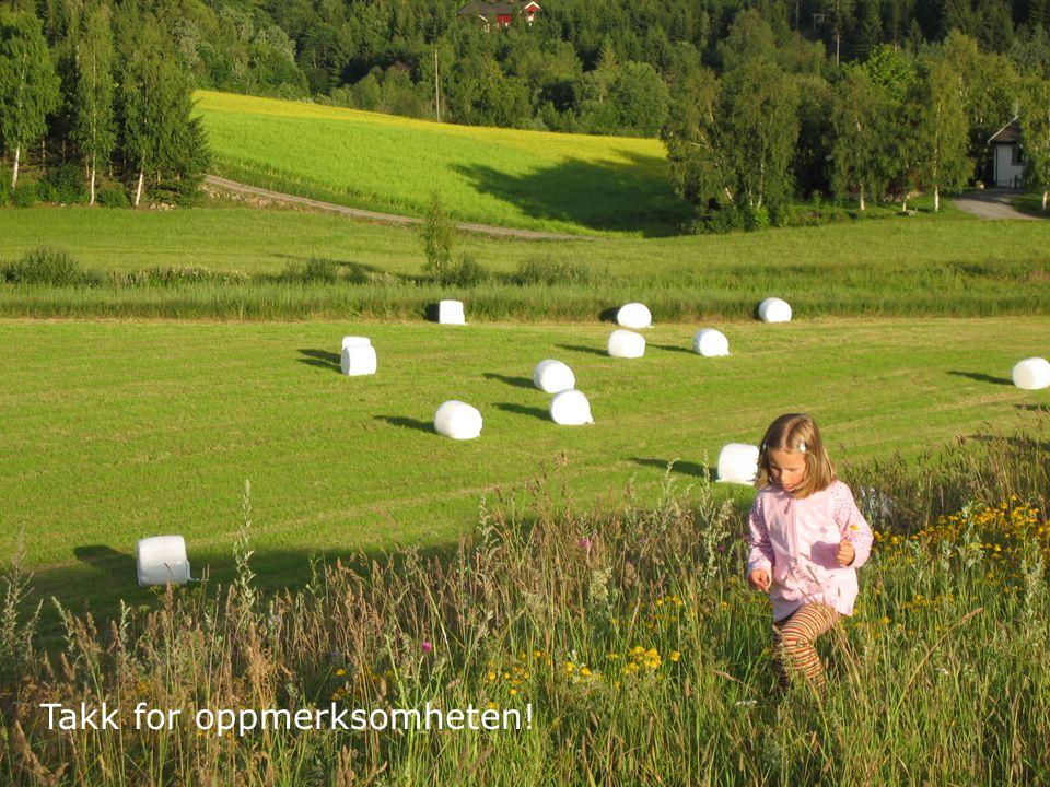 16 Det kongelige landbruks- og matdepartement Kjerneområder - hvordan? Takk for oppmerksomheten!
