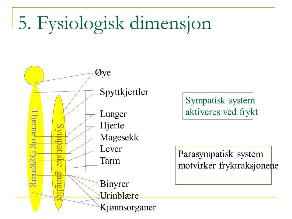 Frykt dimensjoner  Den kognitive dimensjon  - Vurdering av fryktens betydning  Atferd