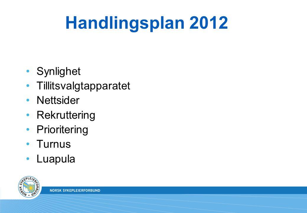 Handlingsplan 2012 Synlighet Tillitsvalgtapparatet Nettsider Rekruttering Prioritering Turnus Luapula