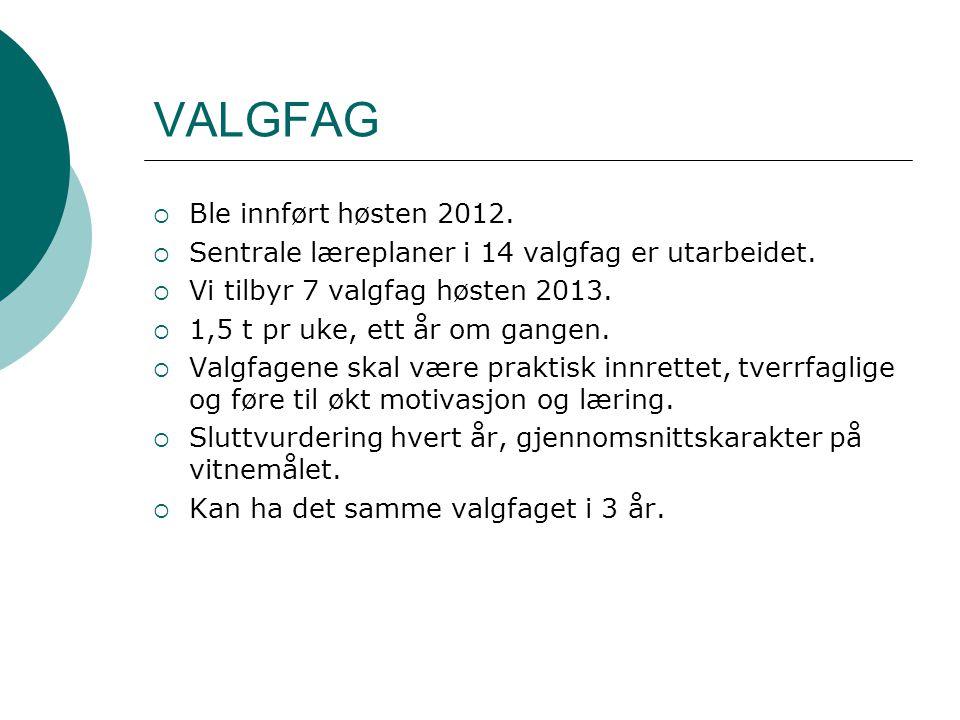VALGFAG  Ble innført høsten 2012.  Sentrale læreplaner i 14 valgfag er utarbeidet.  Vi tilbyr 7 valgfag høsten 2013.  1,5 t pr uke, ett år om gang