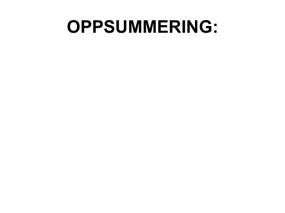 OPPSUMMERING: