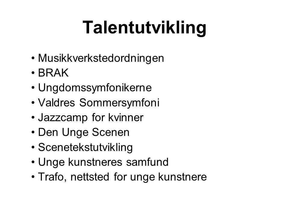 Talentutvikling Musikkverkstedordningen BRAK Ungdomssymfonikerne Valdres Sommersymfoni Jazzcamp for kvinner Den Unge Scenen Scenetekstutvikling Unge kunstneres samfund Trafo, nettsted for unge kunstnere