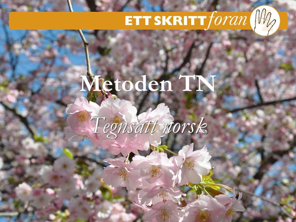 1 Ett skritt foran 4 © Iréne Johansson Metoden TN Tegnsatt norsk Metoden TN Tegnsatt norsk Kursmøte 1-4