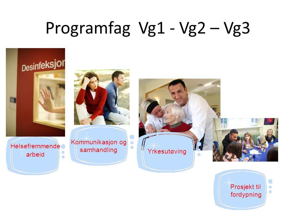 Programfag Vg1 - Vg2 – Vg3 Prosjekt til fordypning Helsefremmende arbeid Yrkesutøving Kommunikasjon og samhandling