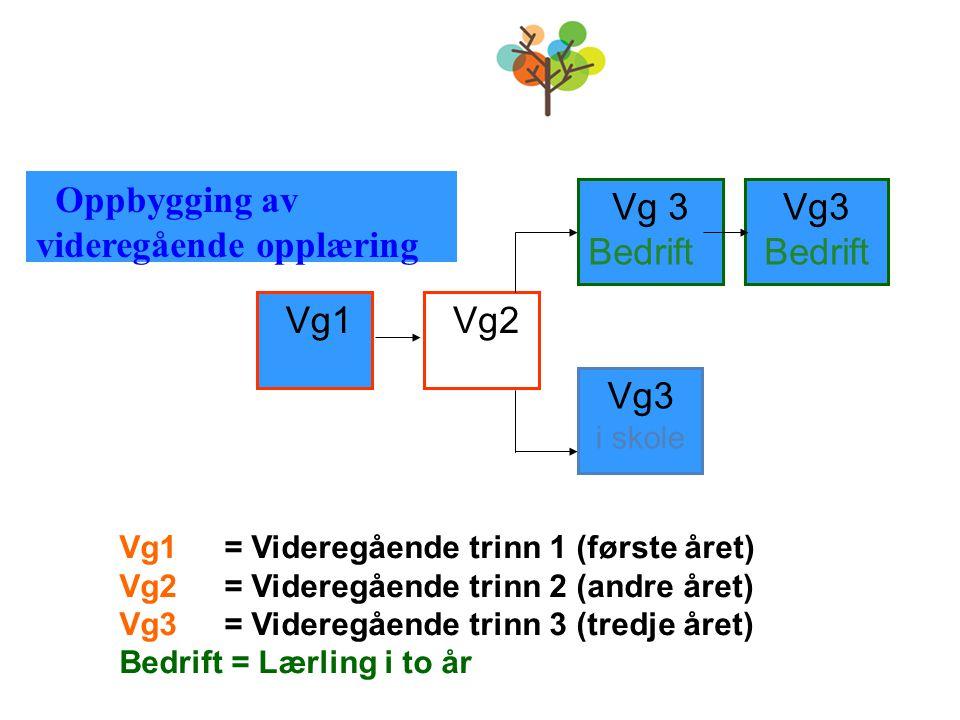 Vg1 Vg2 Vg 3 Bedrift Vg3 Bedrift Vg3 i skole Vg1 = Videregående trinn 1 (første året) Vg2 = Videregående trinn 2 (andre året) Vg3 = Videregående trinn