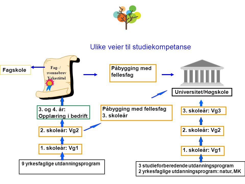 Fag- / svennebrev Yrkestittel Ulike veier til studiekompetanse Påbygging med fellesfag 3. skoleår Universitet/Høgskole 3. skoleår: Vg3 3. og 4. år: Op