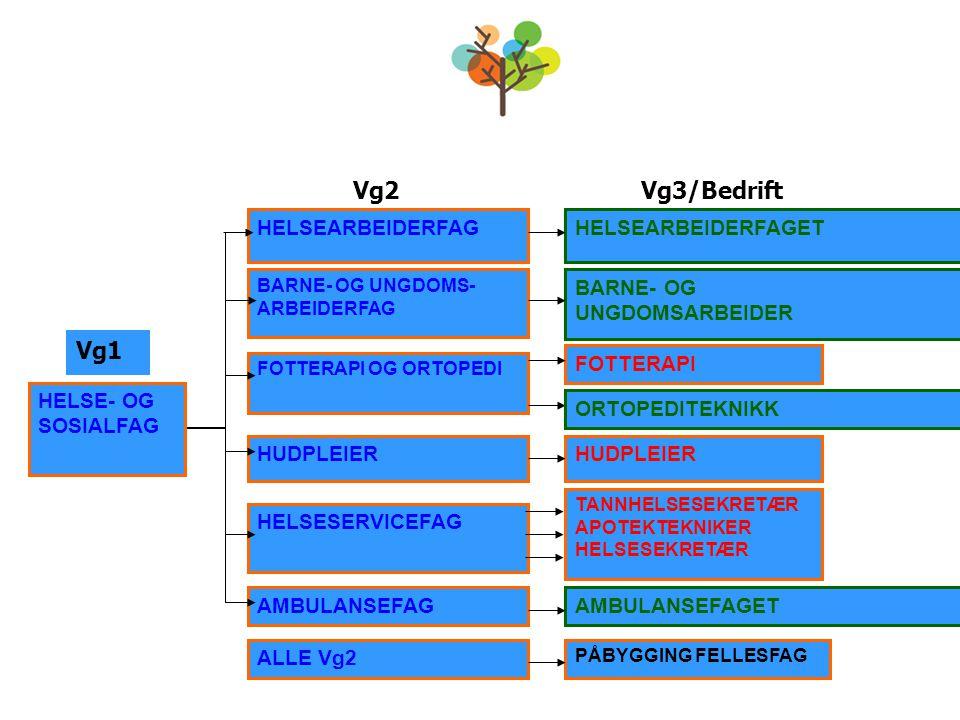 Vg2Vg3/Bedrift HELSE- OG SOSIALFAG HELSEARBEIDERFAG BARNE- OG UNGDOMS- ARBEIDERFAG FOTTERAPI OG ORTOPEDI HELSESERVICEFAG AMBULANSEFAG ALLE Vg2 HUDPLEI