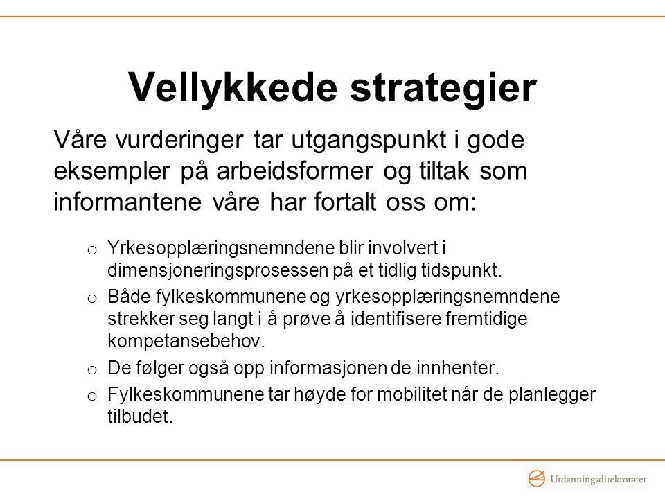 Vellykkede strategier Våre vurderinger tar utgangspunkt i gode eksempler på arbeidsformer og tiltak som informantene våre har fortalt oss om: o Yrkeso