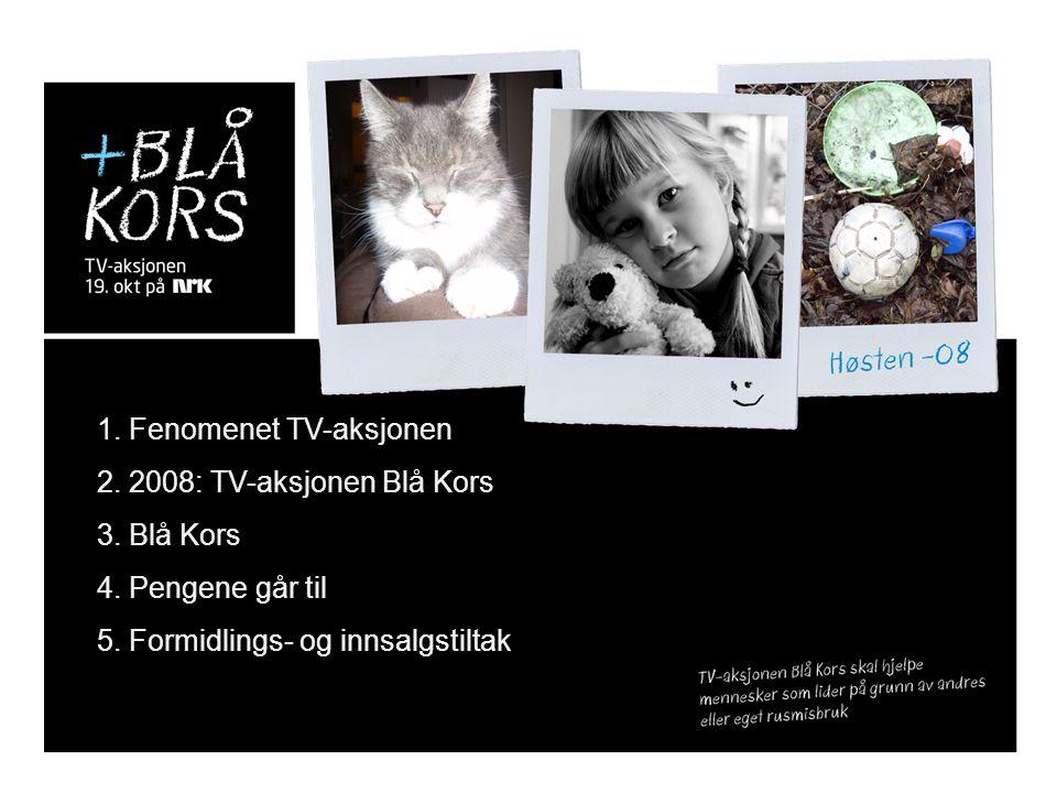 1. Fenomenet TV-aksjonen 2. 2008: TV-aksjonen Blå Kors 3. Blå Kors 4. Pengene går til 5. Formidlings- og innsalgstiltak