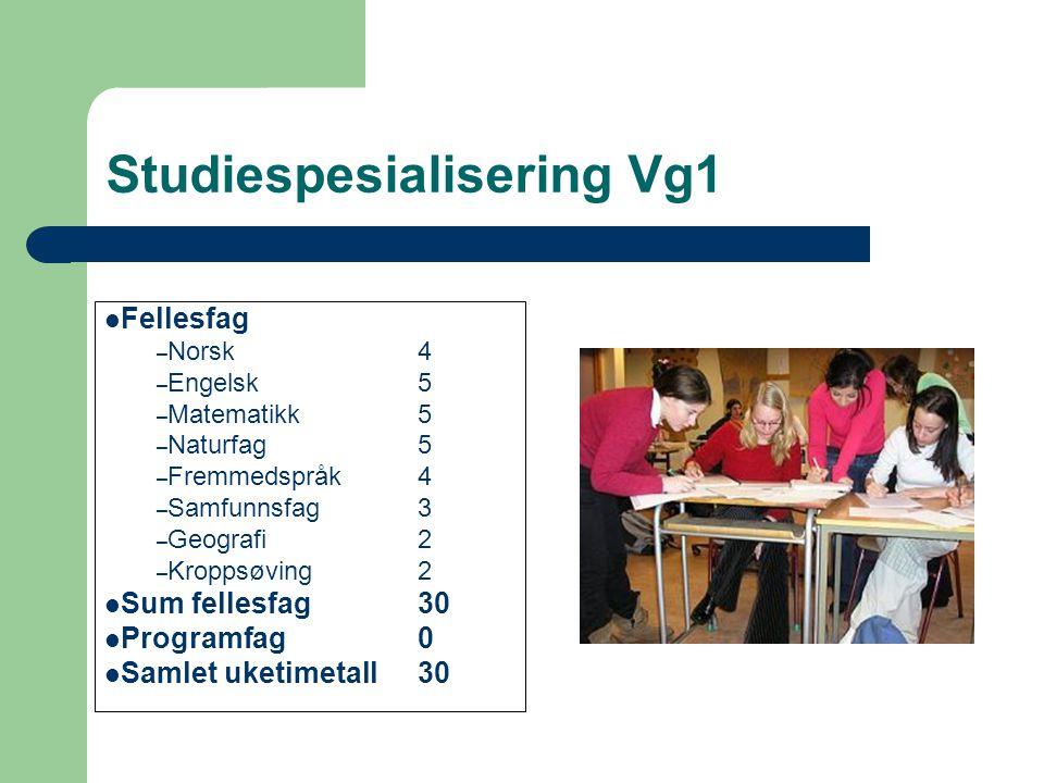 Studiespesialisering Vg1 Fellesfag – Norsk4 – Engelsk5 – Matematikk5 – Naturfag5 – Fremmedspråk4 – Samfunnsfag3 – Geografi2 – Kroppsøving2 Sum fellesfag30 Programfag0 Samlet uketimetall30