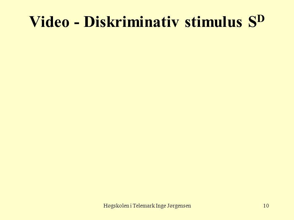 Høgskolen i Telemark Inge Jørgensen10 Video - Diskriminativ stimulus S D