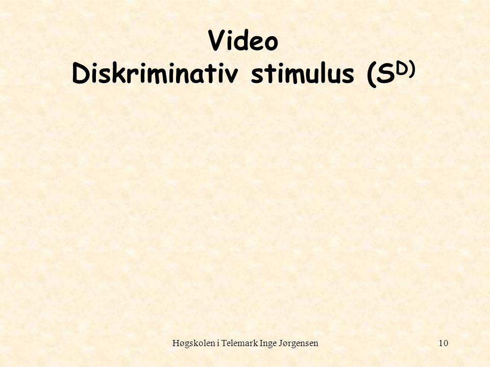 Høgskolen i Telemark Inge Jørgensen10 Video Diskriminativ stimulus (S D)