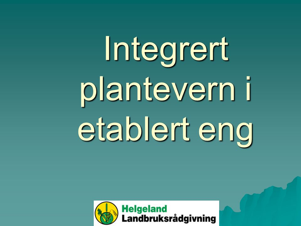 Integrert plantevern i etablert eng