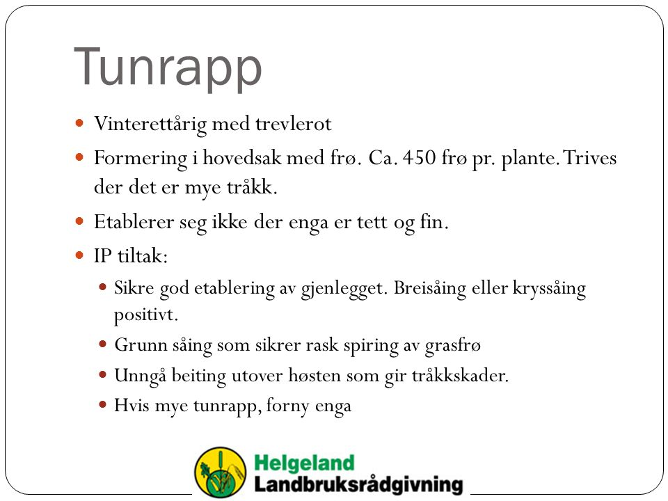 Tunrapp Vinterettårig med trevlerot Formering i hovedsak med frø. Ca. 450 frø pr. plante. Trives der det er mye tråkk. Etablerer seg ikke der enga er