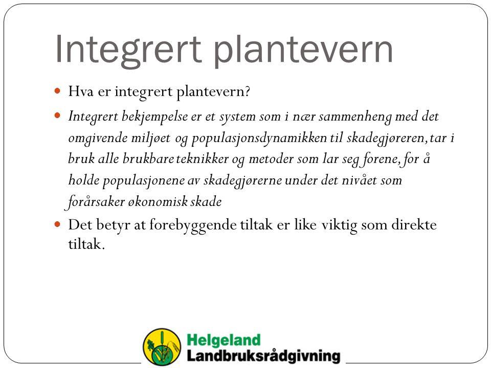 Integrert plantevern Hva er integrert plantevern? Integrert bekjempelse er et system som i nær sammenheng med det omgivende miljøet og populasjonsdyna