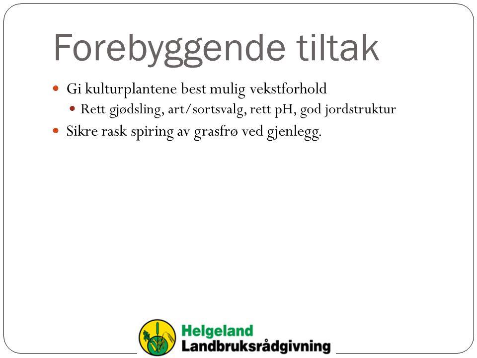 Forebyggende tiltak Gi kulturplantene best mulig vekstforhold Rett gjødsling, art/sortsvalg, rett pH, god jordstruktur Sikre rask spiring av grasfrø v