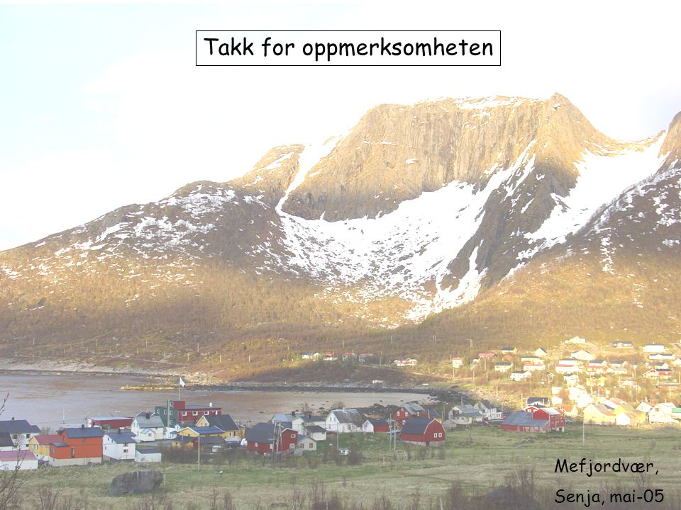 Mefjordvær, Senja, mai-05 Takk for oppmerksomheten