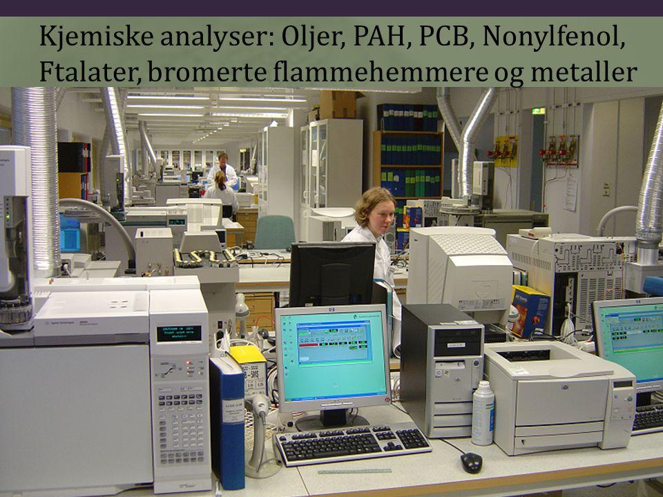 Kjemiske analyser: Oljer, PAH, PCB, Nonylfenol, Ftalater, bromerte flammehemmere og metaller