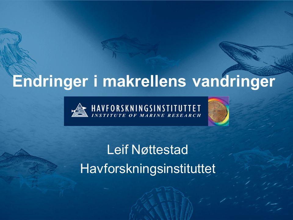Endringer i makrellens vandringer Leif Nøttestad Havforskningsinstituttet