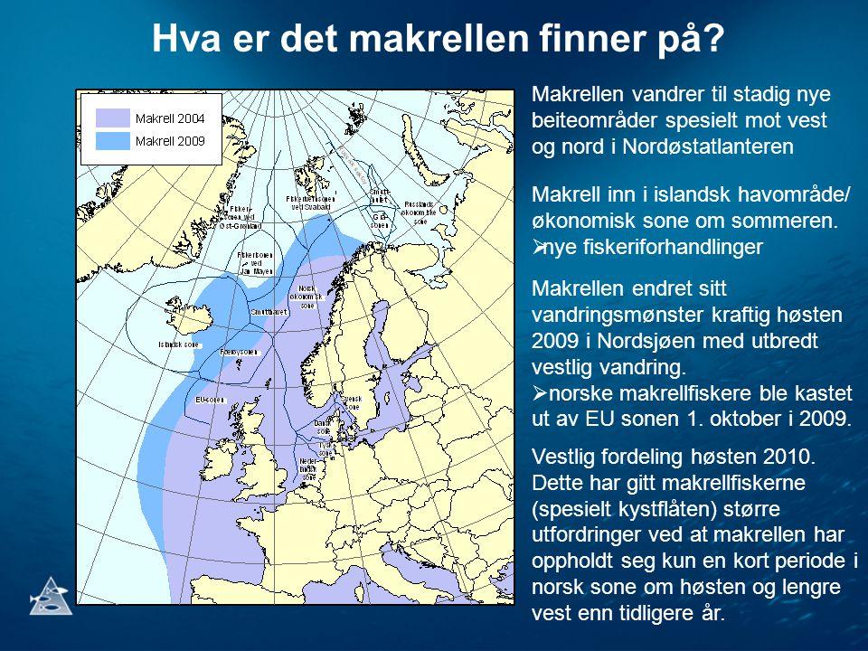 Hva er det makrellen finner på? Makrellen vandrer til stadig nye beiteområder spesielt mot vest og nord i Nordøstatlanteren Makrell inn i islandsk hav