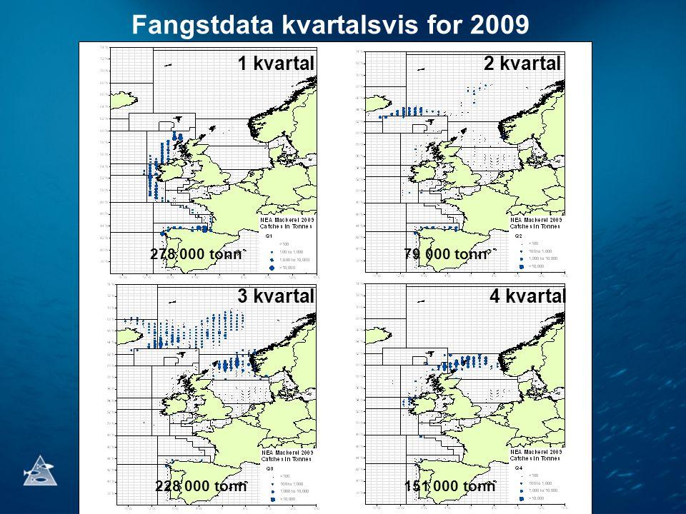 Fangstdata kvartalsvis for 2009 1 kvartal2 kvartal 3 kvartal4 kvartal 278 000 tonn79 000 tonn 228 000 tonn151 000 tonn